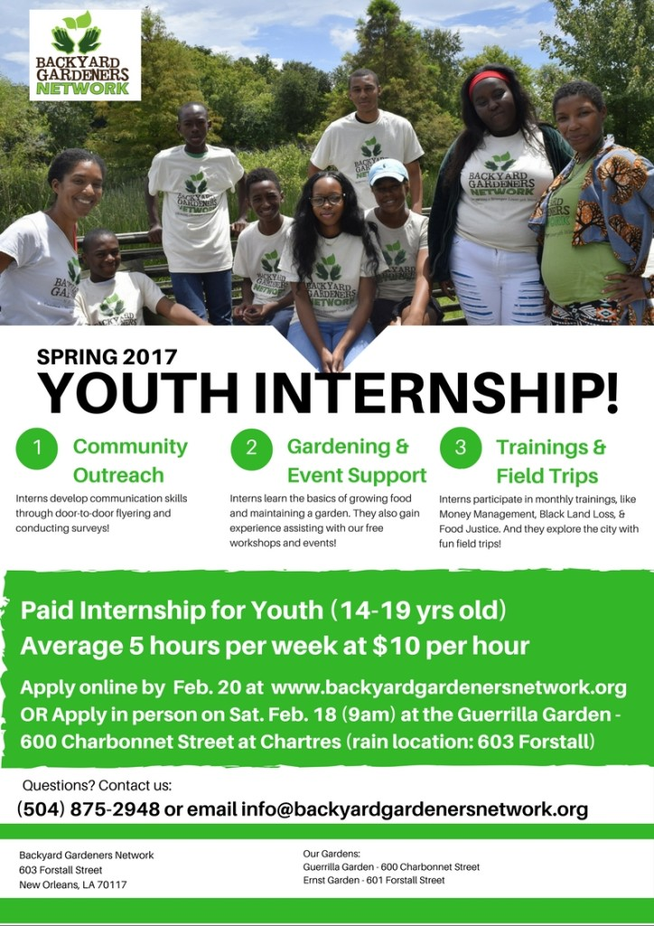 Youth Internship Spring 2017